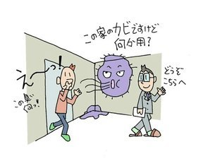 SSカラー②JPEG.jpg